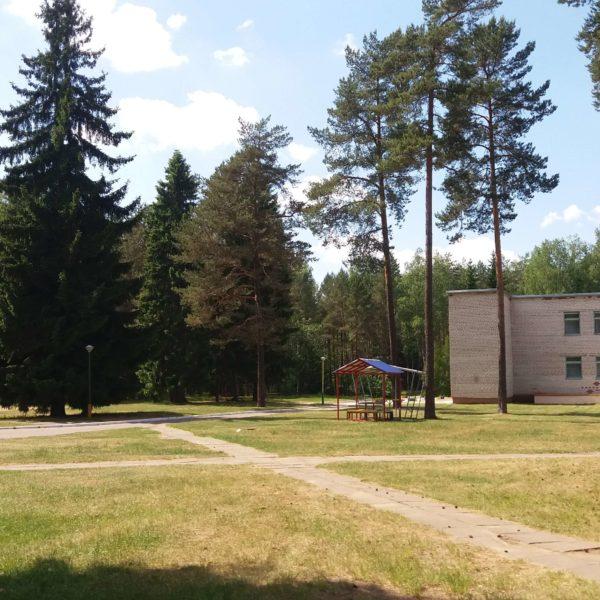 лагерь в сосновом бору